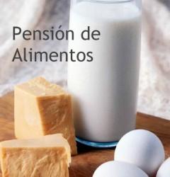 PENSIÓN DE ALIMENTOS A FAVOR DE UN MENOR AUN CUANDO EL PROGENITOR ESTÉ EN IGNORADO PARADERO Algeciras